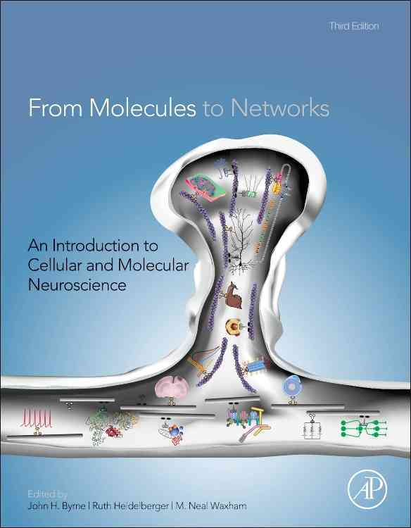 From Molecules to Networks By Byrne, John H. (EDT)/ Heidelberger, Ruth (EDT)/ Waxham, M. Neal (EDT)